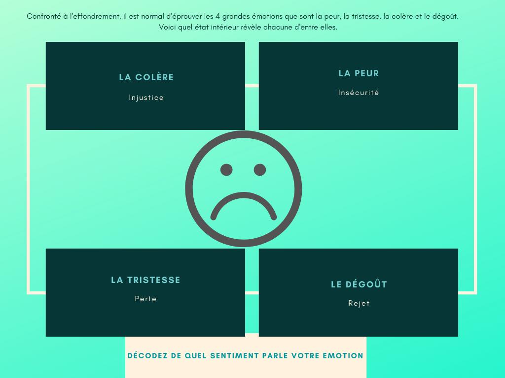 Diagramme de mise en correspondance des émotions négatives et des sentiments qui les animent